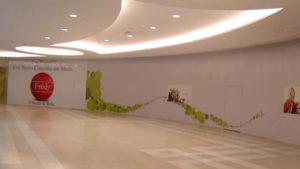 Instalação de adesivos em tapumes, Shopping Praça da Moça